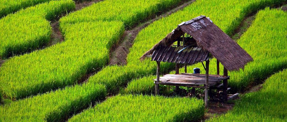 Biztosan induló őszi – téli – tavaszi útjaink: Vietnam kincsei
