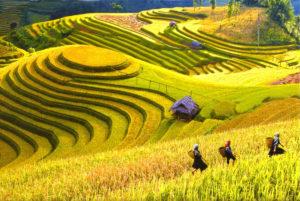 Sapa hegyi törzsek által lakott vidéke Lao Cai tartományban fekszik, 350 km-re Hanoitól, közel a kínai határhoz.